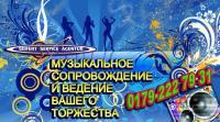Russischer DJ Tamada für deutsch-russische Hochzeit,  Geburtstag,  Party.