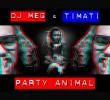Тимати Party Animal DJ Meg ft. Timati
